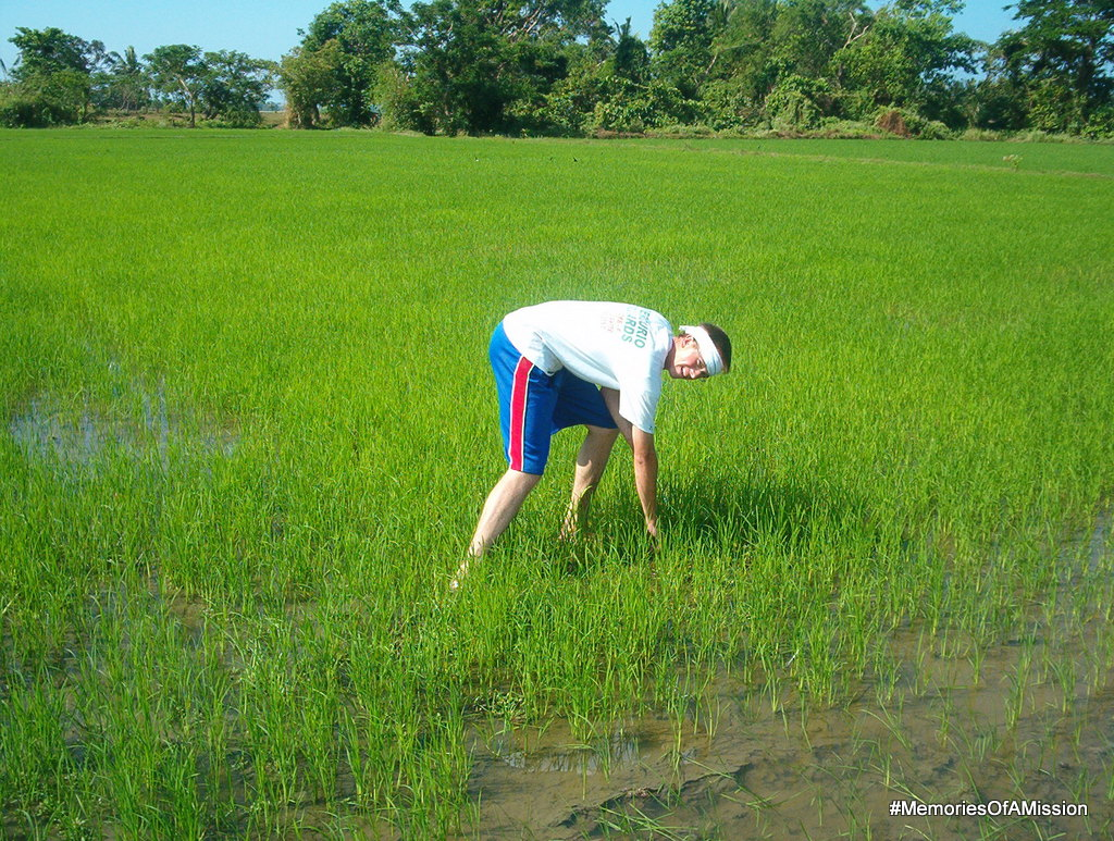 """Nagtatalok sa bukid"" Planting rice in the field. Yep, that's me."
