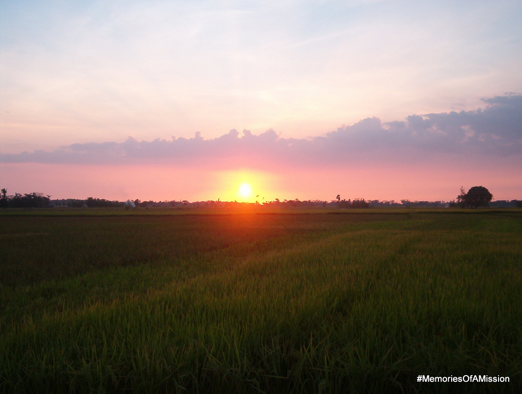 Sunset over the rice fields of Calinaan